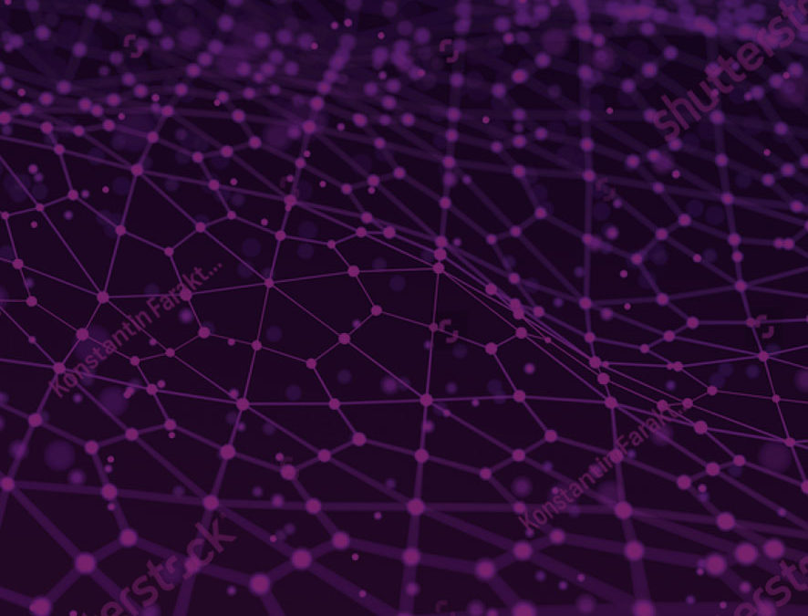 Algorithms and Big Data: Are they enough to make good business decisions?